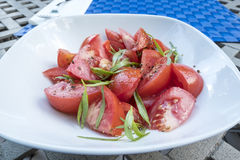 Tomato Salad with Tarragon Herb. Tomato Salad with Fresh Tarragon Herb in a Olive Oil Dressing royalty free stock images