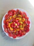 Tomato salad. Salad of various types of tomato on porcelain plaste Royalty Free Stock Photos