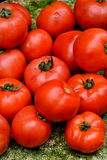 Tomato on sale. Fresh vegetable, tomato, with green stem and leaf, shown as objective in intersting color and shape, raw and fresh fruit and nutrition Stock Photo