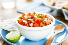 Tomato salsa with tortilla and toast Royalty Free Stock Photo
