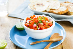 Tomato salsa with tortilla and toast Royalty Free Stock Image