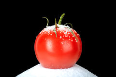 Tomato On Salt Royalty Free Stock Photography