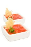 Tomato sauce. White bowl of tomato sauce with cheese chips stock image