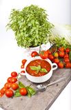 Tomato sauce Stock Image
