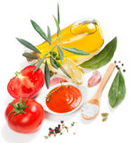 Tomato sauce, fresh vegetables and spices Royalty Free Stock Image