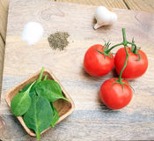 Tomato sauce ingredients Stock Photography