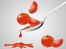 Tomato sauce. Red tomato sauce on the spoon Stock Photos