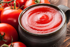 Tomato sauce and red tomatoes Royalty Free Stock Image