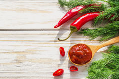 Tomato sauce salsa, hot chili, dill and basil,  on wooden backgr Royalty Free Stock Photography