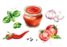 Tomato sauce set with tomatoes, garlic, chili, black pepper and Basil. Watercolor hand drawn illustration, isolated on white backg. Round vector illustration