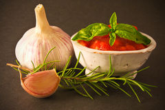 Tomato Sauce with spices Stock Images