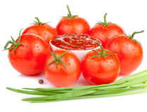 Tomato sauce, wet tomatoes and Fresh Scallions Royalty Free Stock Images