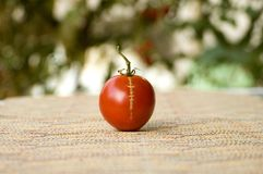 Tomato with a Scar Royalty Free Stock Photography