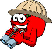 Tomato scout or explorer with binoculars Stock Photography