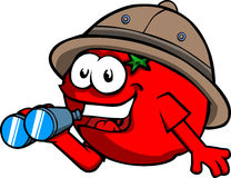 Tomato scout or explorer with binoculars Royalty Free Stock Photo
