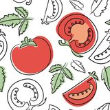 Tomato seamless pattern. Hand drawn fresh vegetables. Vector sketch background. Doodle wallpaper. Red and green print. For print stock illustration