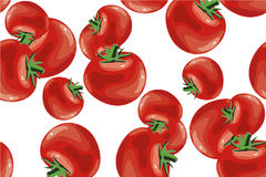 Tomato seamless pattern vector on white Royalty Free Stock Images
