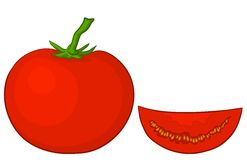 Tomato and segment Stock Image
