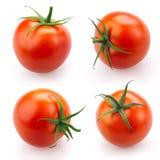 Tomato set isolated on white. Background Stock Photos