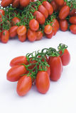 Tomato of Sicily (Italy) Stock Images