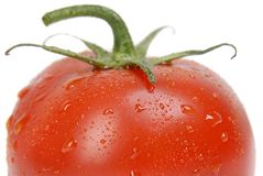 Tomato single close-up Stock Images