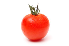 Tomato single with drops Stock Images