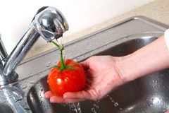 Tomato in the sink. Fresh red tomato Stock Photography