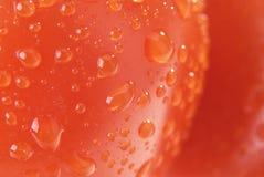 The tomato skin Stock Photos