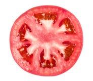 Tomato slice. Isolated on white background royalty free stock photography