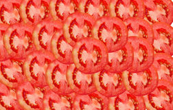Tomato slice Royalty Free Stock Images