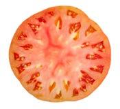 Tomato slice Stock Image