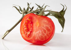 Tomato slice on branch Stock Photo