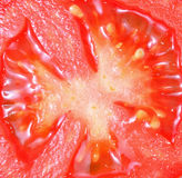 Tomato slice Stock Images