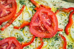 Tomato slice detail of traditional Italian focaccia bread Stock Images