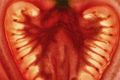 Tomato Slice Enlightened Close Up Background. Red Tomato Slice Enlightened Close Up Background Stock Photography