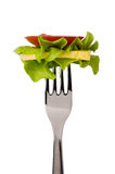 Tomato slice, lettuce and cheese on fork Royalty Free Stock Photos