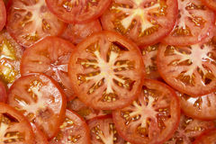 Tomato slices. Many slices of tomatoes background Royalty Free Stock Image