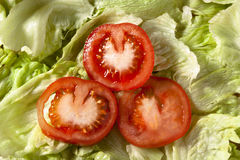 Tomato Slices on Salad Stock Image