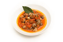 Tomato snails Royalty Free Stock Image