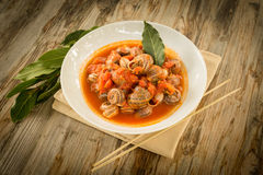 Tomato snails Stock Images