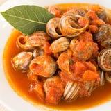 Tomato snails Stock Image
