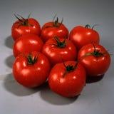 Tomato Solanum lycopersicum Stock Photo