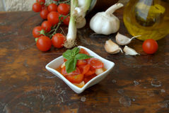 Tomato souce. Tomato sauce with fresh basil royalty free stock photo