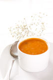 Tomato soup. Bowl of a tomato soup on a bright background Stock Images