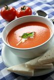 Tomato Soup 2. A bowl of tomato soup garnished with cream and herbs stock photography