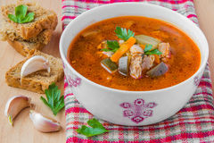 Tomato soup. With vegetables and meat Royalty Free Stock Image