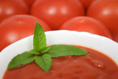 Tomato soup. With basil leafs and more tomatoes as background Royalty Free Stock Images