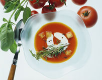 Tomato soup. With creme fraiche, croutons & sprig of rosemary Royalty Free Stock Photos