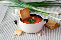 Tomato  soup with cheese. Stock Images