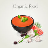 Tomato soup with fresh vegetables-EPS10 Royalty Free Stock Photo